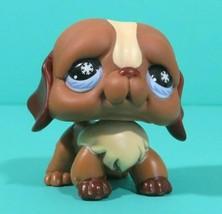 Littlest Pet Shop Puppy Dog Brown Saint St. Bernard Snowflake Eyes 688 A... - $98,43 MXN