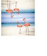 Flamingo Checkbook Cover Flamingo Birds Beach - $5.99