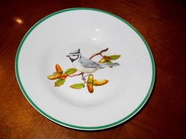 NATIONAL WILDLIFE FEDERATION BIRDS OF NORTH AMERICA WFE3 SOUP BOWL D - $5.93