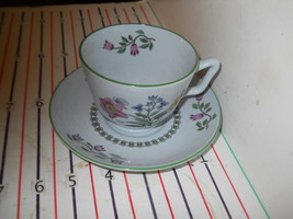 SPODE SUMMER PALACE CUP AND SAUCER - $13.81