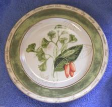 American Atlier Bouquet Garni salad plate carrots - $3.91