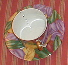 FITZ & FLOYD CLOISONNE TROPICANA CUP AND SAUCER SET - $13.86