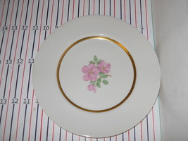 FRANCISCAN CHEROKEE ROSE WIDE BAND  DINNER PLATE - $10.64