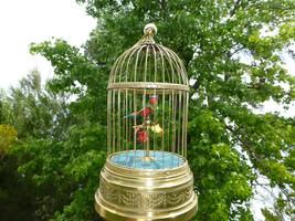 1890 Antique French Bontems Automaton Singing Bird Cage Music Box (Watch Videos) - $8,911.00