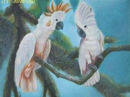 12X16 inch Animal Art Oil Painting White Parrot Couple - $19.50