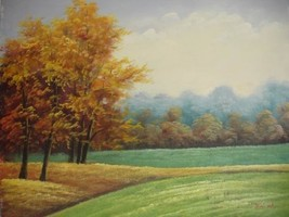 20X24 inch Landscape Oil Painting Australian Countryside - $17.61
