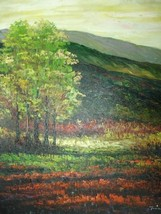 20X24 inch Landscape Hand-painted Painting Utah Countryside - $17.61