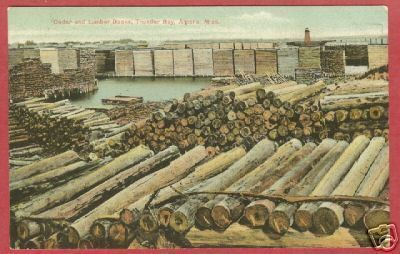 Alpena MI Lumber Thunder Bay Lighthouse Postcard BJs