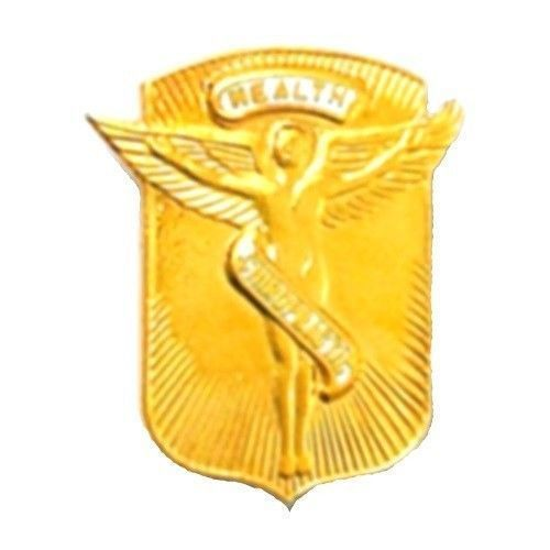 Primary image for Chiropractic Health Lapel Pin Medical Emblem Winged Angel Graduation 966 New