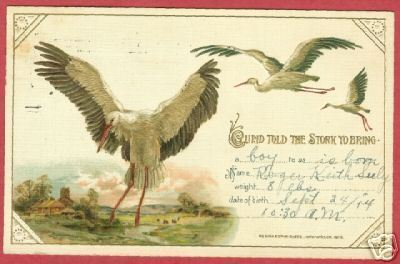 STORK BIRTH ANNOUNCEMENT PC Cupid Detroit MI 1914 BJs