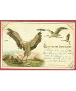 STORK BIRTH ANNOUNCEMENT PC Cupid Detroit MI 1914 BJs - $10.00