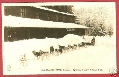 Primary image for Longmire Springs Alaska Dog Team Rainier AZO RPPC BJs