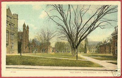 NEW HAVEN CONNECTICUT Yale Campus University 1910 CT