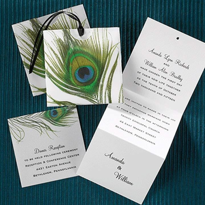 Peacock feather z fold wedding invitation invitations for Peacock wedding invitations with photo