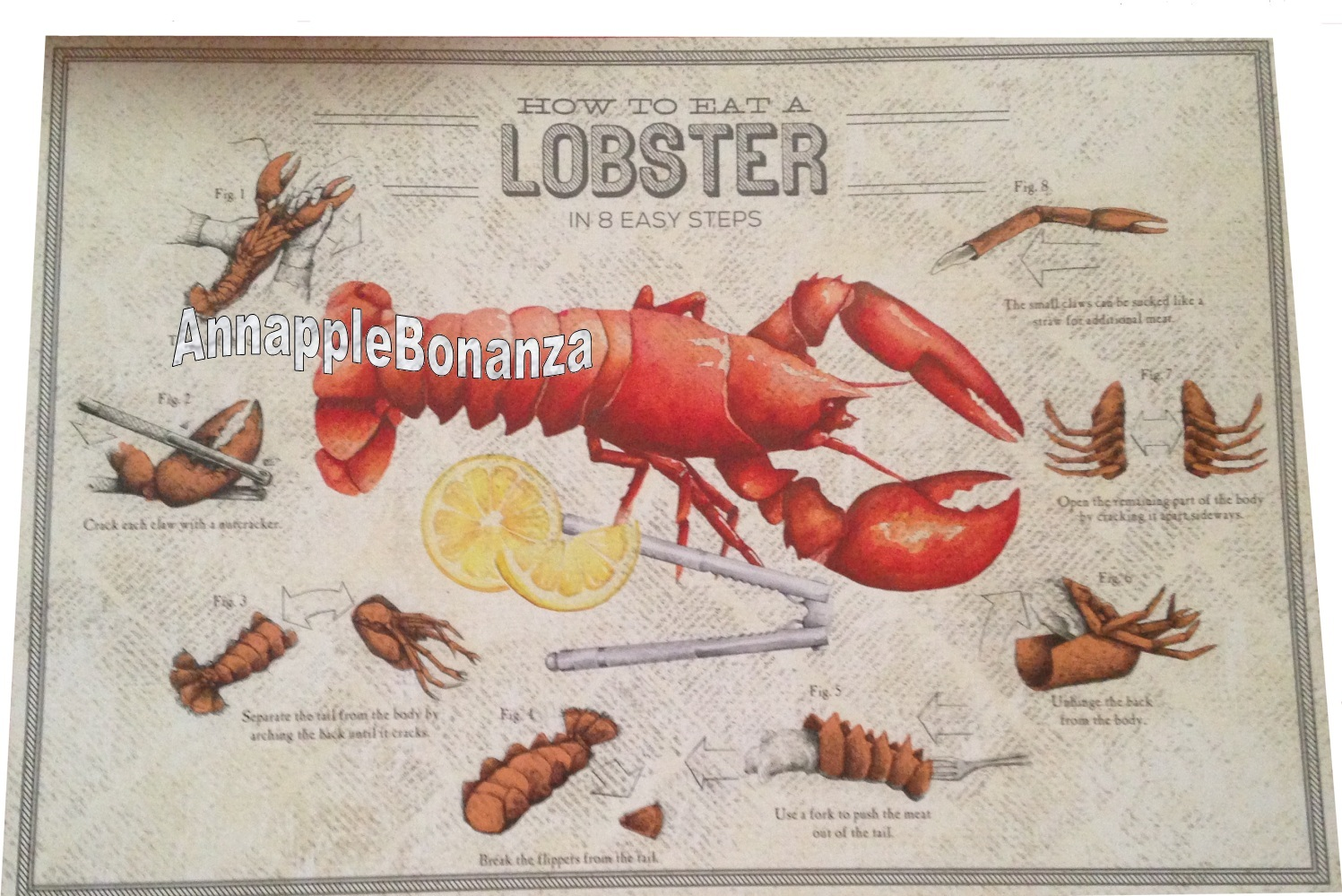 How to Eat a Lobster in 8 easy steps Paper Placemats 24 Lobster Fest Clambakes