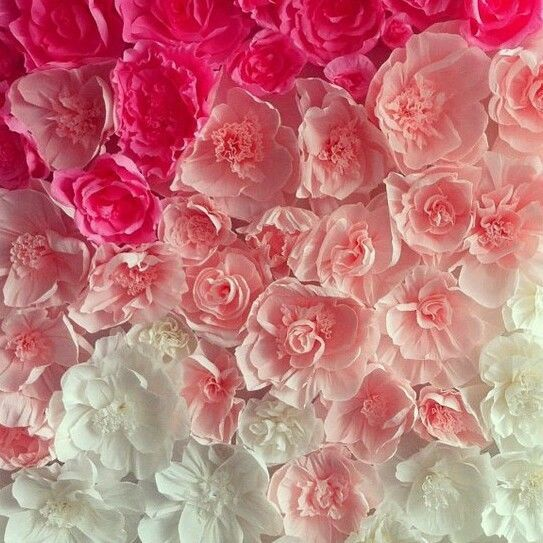 sale paper flower wall backdrop  custom made  perfect for wedding babyshower