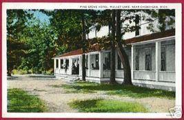 Mullet Lake Michigan Pine Grove Hotel Cheboygan Mi - $12.50