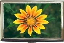 AFRICAN DAISY GANZIA FLOWER CIGARETTE MONEY CARD CASE Bonanza