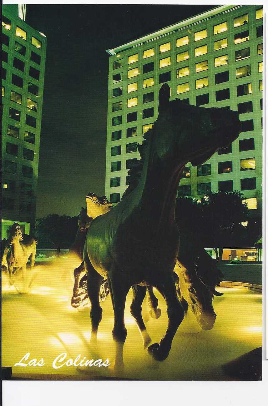 LAS COLINAS POSTCARD, New: The Mustangs