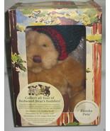 Collectible Eureka Pete Stuffed Bear 2000 Mervyns California Exclusive NEW - $9.98