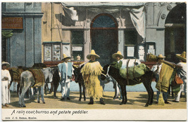 Unposted Early-Century Mexican Burros and Peddlers Postcard - $2.50