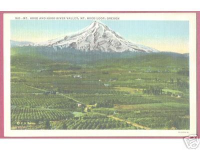 Primary image for MT HOOD OREGON River Valley Loop fr Lost Lake