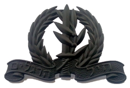 IDF Israeli army Infantry CAP BADGE beret hat pin Israel Zahal  - $9.99