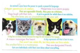 Modern Advertising Postcard Veterinary Appt Reminder Cats Dogs Animals - $4.99