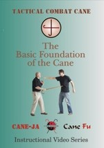 Tactical Combat Basic Foundation of the Cane DVD Locks Strikes Punches S... - $34.95