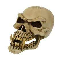 PTC Pacific Giftware Large Dragon Demon Skull Skeleton Figurine - £22.97 GBP