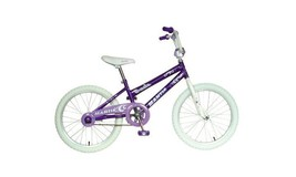 "Girl's 20"" Bike ~ Alloy Rims ~ Chain Guard ~ Sturdy Durable Outside Fun ~ Purple - $164.47"