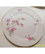 Bavaria Tirschenreuth Germany Dinner Plate Rose Pattern The Trellis 2267 - $11.71