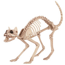 17-034-Creepy-Cat-Poseable-Bones-Life-Size-Skeleton-Halloween-Prop-Decor... - $30.00