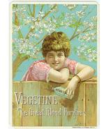 Pretty Vintage Advertising Trading Card - Vegetine - $4.00