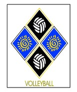 Volleyball3- Download-ClipArt-ArtClip-Digital  - $4.00
