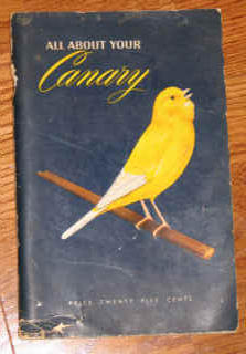 All About Your Canary 1951 Frenchy the Canary Pirate