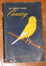 Canary1 thumb200