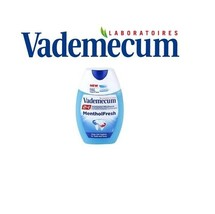Vademecum Menthol Fresh 2 In 1 Toothpaste & Mouthwash 75ml White Guard Formula - $4.00