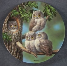 Peek-A-Whoo Collector Plate Baby Owls Of North America Joe Thornbrugh Birds - $26.95