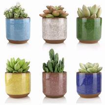 Ceramic Succulent Planter Pots 6pcs 2.5 Inch Small Ice Crack Succulent PotsCactu