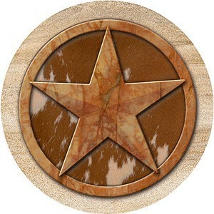Texas Lone Star Sandstone Coasters