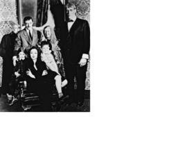 Addams Family John Astin Carol Jones MM Vintage 8X10 BW TV Memorabilia P... - $4.99