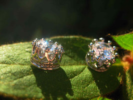 Metaphysical Crown of success earrings makes everything go your way - $19.80