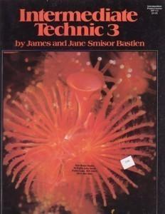 Bastienintermediatetechnic3