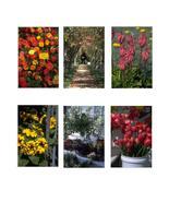 6 Flower 407-Download-ClipArt-ArtClip-Digital Tags - $4.00