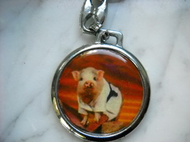 Pig marshal arts key chain  collectable karate ... - $6.00