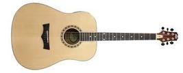 Peavey DW-2 Dreadnaught Guitar - $189.00