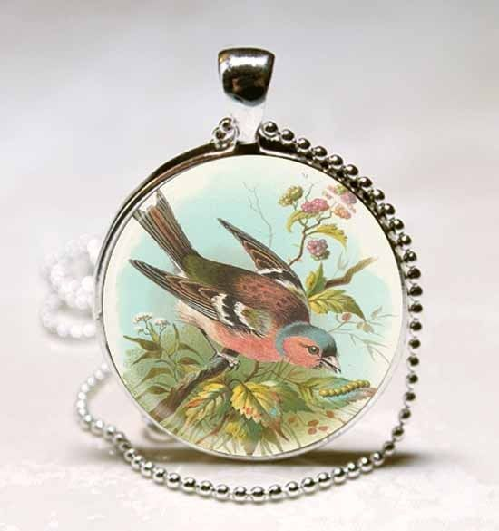 Primary image for Chaffinch Bird Photo Necklace Glass Dome Necklace Pendant (PD0483)