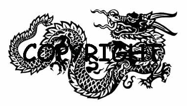 AWESOME ASIAN DRAGON! new mounted rubber stamp