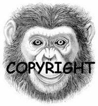 MONKEY FACE new mounted rubber stamp - $8.00